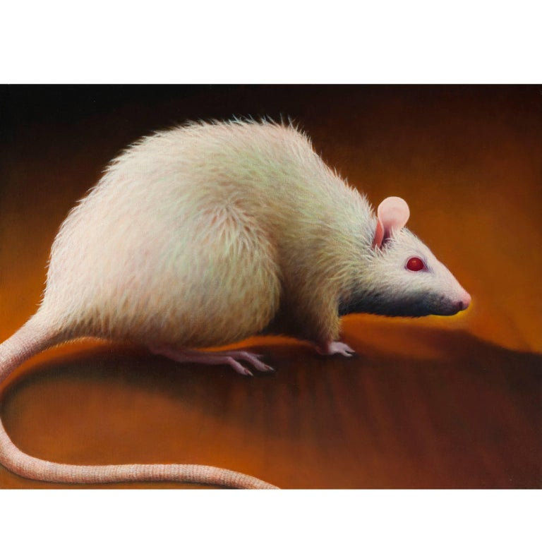 Photorealism Oil Painting by Manon Cleary of Rat For Sale