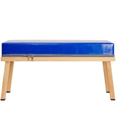 Visser and Meijwaard Truecolors Bench in Blue PVC Cloth with Zipper