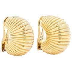 Gold Shell Ear Clips