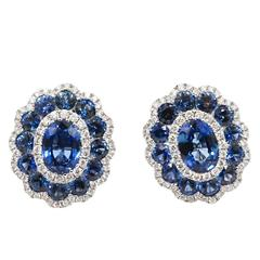 18 Karat White Gold Gregg Ruth Sapphire Earrings