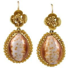 Pair of Georgian Cowrie Shell Gold Earrings