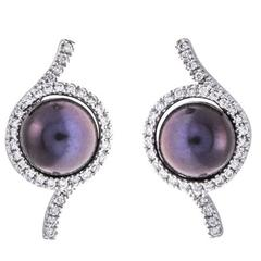 Black Pearl 0.30 Carat Diamonds 18 Carat White Gold Earrings