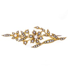 Edwardian 9 Carat Yellow Gold Split Pearl Brooch