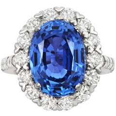 Tivon Heirloom large Platinum Diamond and Ceylon Sapphire Classic Cluster Ring