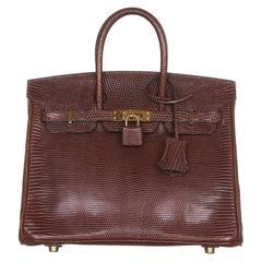Hermes Cocaon Lizard Birkin 25 Bag
