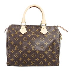 Brown Louis Vuitton Monogram Speedy 25 Bag