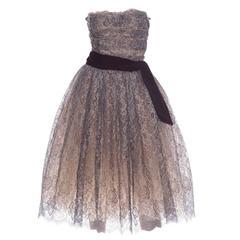 Dolce & Gabbana Navy Blue Strapless Tea - Length Lace Evening Dress