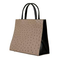 TRES CHIC! Delage of Paris Taupe & Black Ostrich Handbag