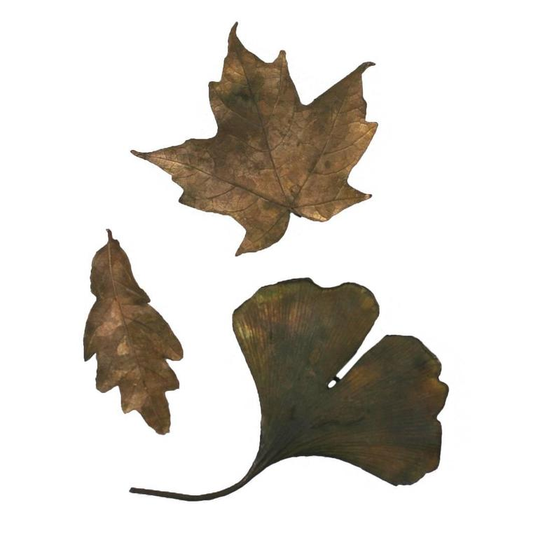 Bronze Lost Wax Leaf Brooches 1