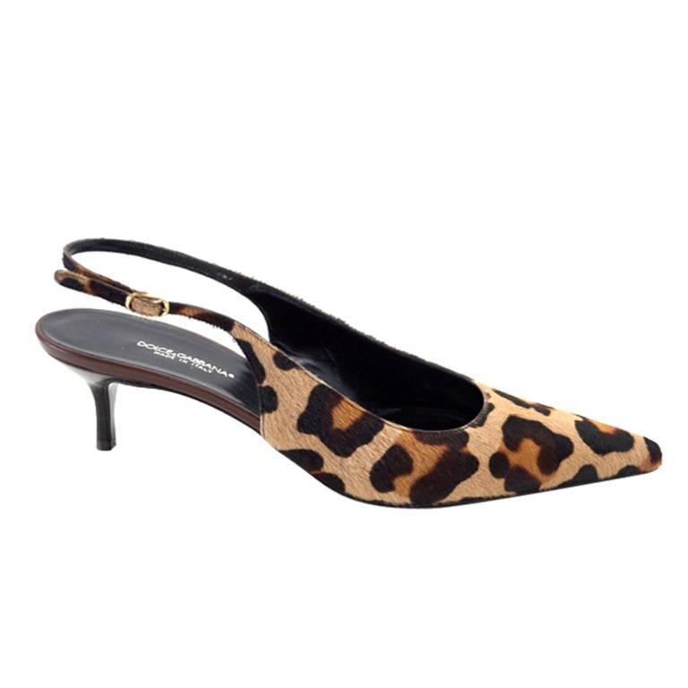 750708b2861 Dolce Gabbana Shoe Pony Leopard Signature Slingback 40.5 fits 9.5 new For  Sale