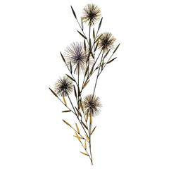 Large Brass Urchin Pom Pom Tree Wall Sculpture by Curtis Jere