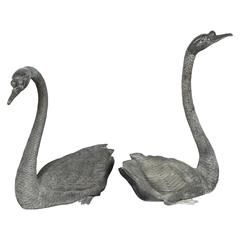 Gorgeous Pair of Lifesize Bronze Swans
