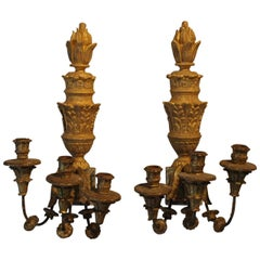 Pair of 18th Century Northern Italian Three-Arm Sconces, Appliques in Giltwood