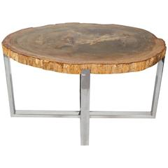 Outstanding Petrified Wood Slab Side Table with Chrome Base