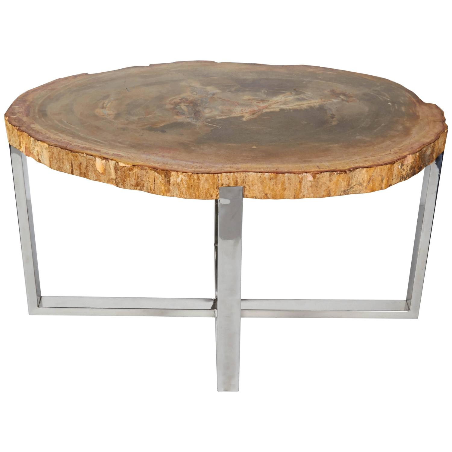 Outstanding petrified wood slab side table with chrome for Side table base
