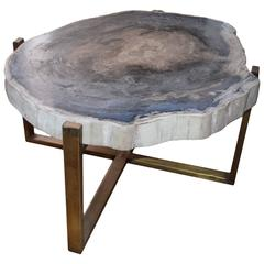 Grey and Beige Petrified Wood Slab Table