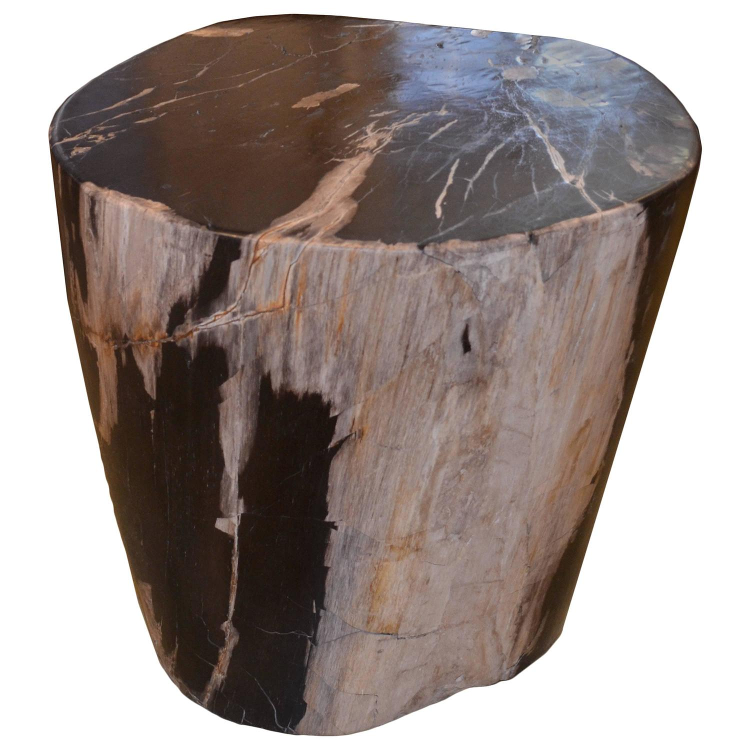 petrified wood side table at 1stdibs