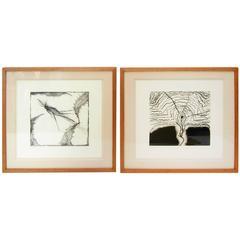 Francisco Toledo Original Prints
