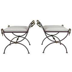 Pair of Neoclassical Iron and Brass Swan Benches