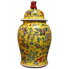 Chinese Famille Jaune Ginger Jar