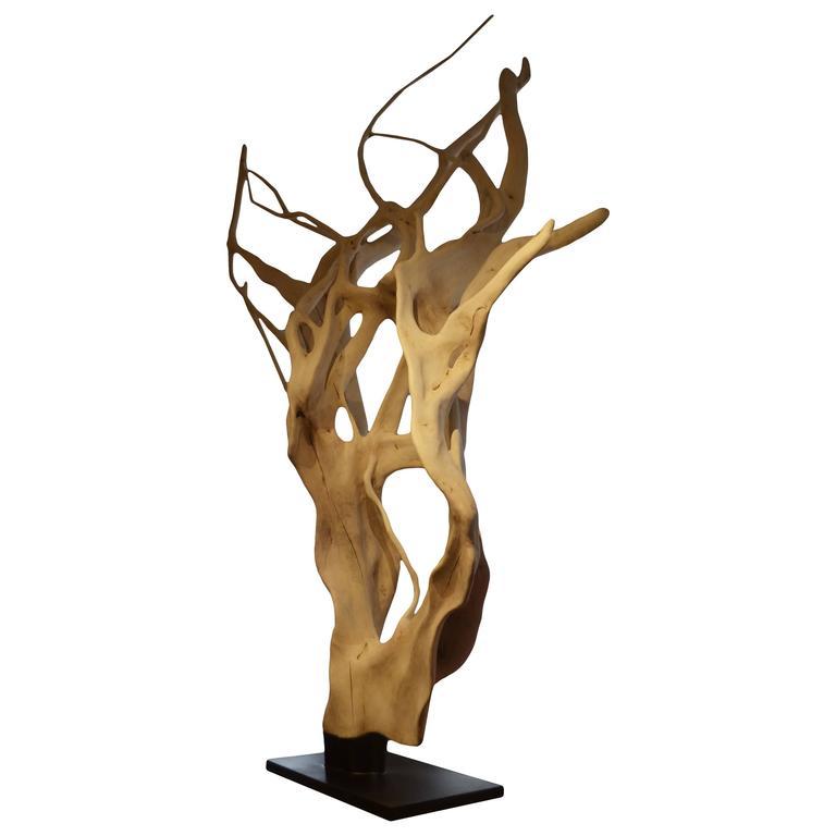 Andrianna Shamaris Ficus Wood Tree Sculpture