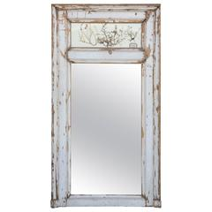 19th Century French Trumeau Mirror with Herbs