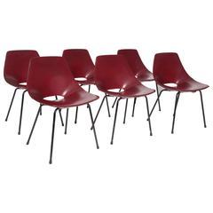 "Pierre Guariche, Set of Six ""Tulipe"" Chairs, circa 1950"