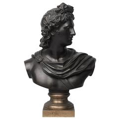 19th Century Grand Tour Bronze Bust of Apollo Belvedere after Leochares