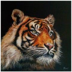 """"""" Tiger Tiger """""""