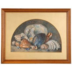 Superb Quality Victorian Watercolor Painting of Seashells