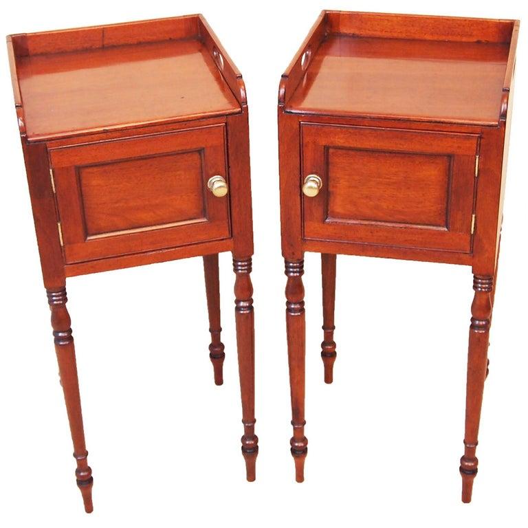 Antique Regency Mahogany Pair of Bedside Cupboards