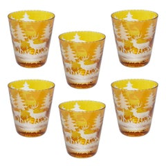 Black Forest Set of Six German Tumbler Glass in Amber with Hunting Scene Sofina