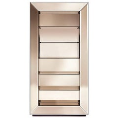 Roberto Cavalli Iconic Collection Selfie Bookcase in Bronze