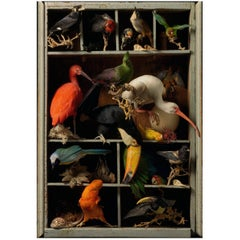 'Les Peintures des Taxidermistes' No.6. Art Print Photo by Sinke & Van Tongeren