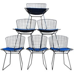 Harry Bertoia for Knoll Wire Chairs in Black
