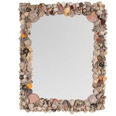 Large Natural Shell Mirror