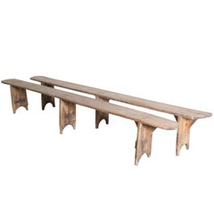 Wonderful Pair of 19th Century French Rustic Benches