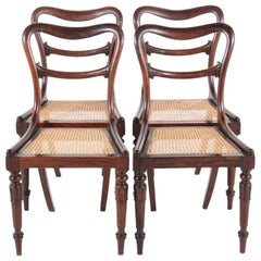 19th Century English Walnut Dining Chairs