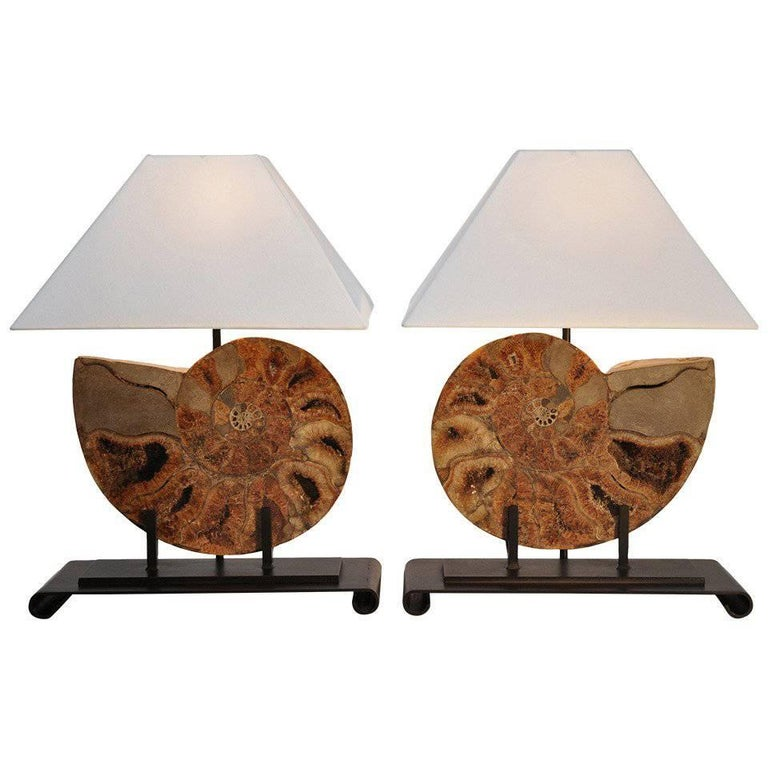 Pair of Table Lamps Made with Fossils For Sale