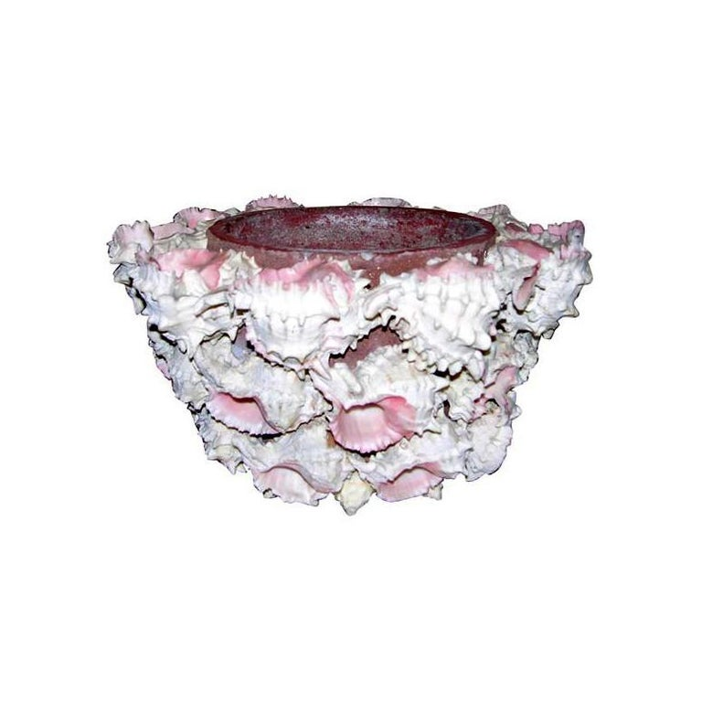 Shell Encrusted Flower Pot For Sale