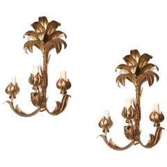 Set of Large Palm Frond Sconces, Sold per pair