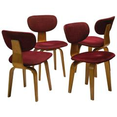 Pastoe SB03 Combex Series Dining Chairs in Birch by Cees Braakman