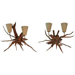 Pair of Mid-Century Modern Sun Bleached Root Wall Sconces