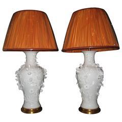 Pair of Antique French Louis XVI Gilt Bronze and Blanc de Chine Porcelain Lamps