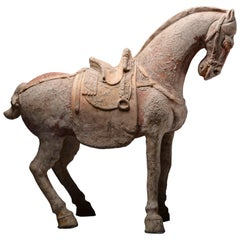 Ancient Chinese Terracotta Sui Dynasty Horse, 600 AD