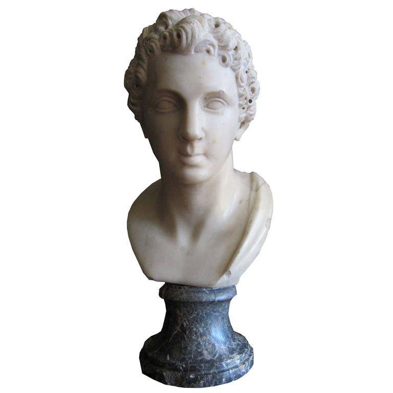 Antique Carrara S Marble Male Bust For Sale At 1stdibs