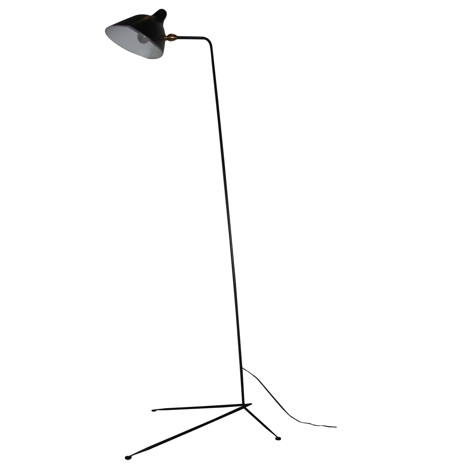Standing e Arm Lamp by Serge Mouille at 1stdibs