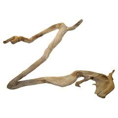 Andrianna Shamaris Organic Teak Wood 'Horse' Sculpture