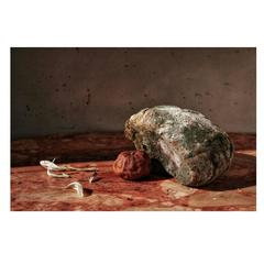 Photography by Joachim Lapôtre, Titled Rotten Bread, 2006