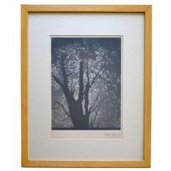 Signed Konrad Cramer Silver Gelatin Print